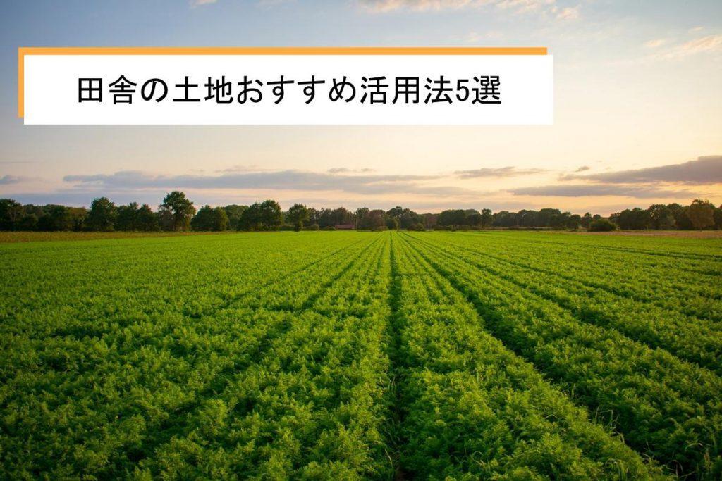 田舎の土地を活用する方法5選|困ったときの相談先についても解説