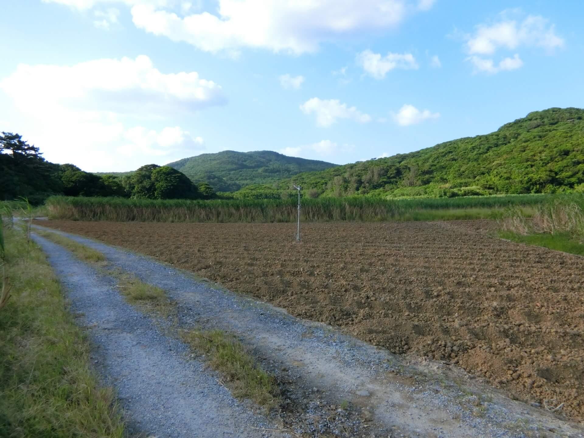 田舎で儲かる土地活用をするなら